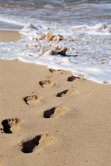 Children's footprints on the beach